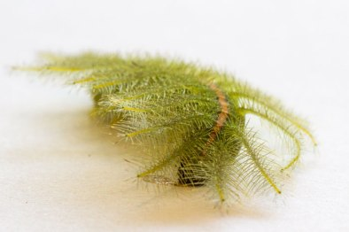 Caterpillar with a difference