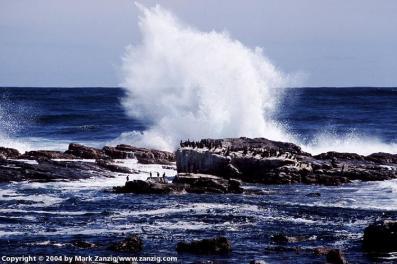 image12a Cape Point