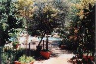 Image28b-Balalaika Pool
