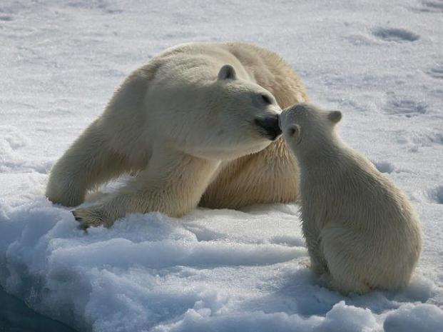 Kissing time!
