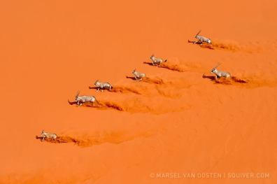 Photo by ©Marsel van Oosten