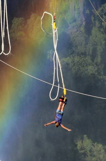 Bungee jumping at the Falls.