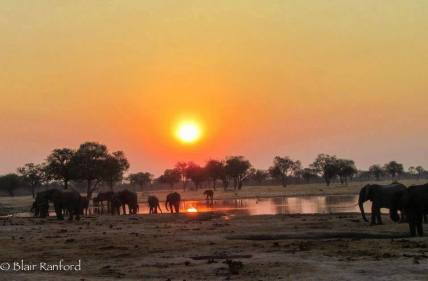 Sunset at the waterhole