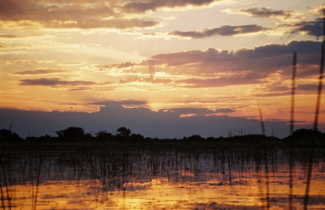 800-SunsetOkavangoDeltaBotswana