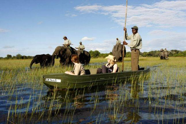 Botswana_Okavango_Delta_287
