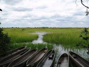 okavango-delta-3
