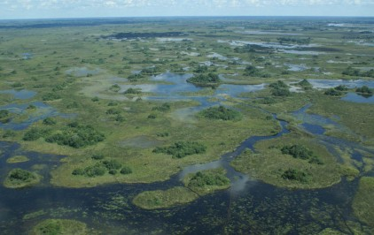 Okavango Delta From The Air
