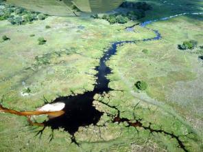okavango-delta-charter