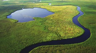 Okavango-Delta.docx_2
