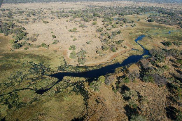 Okavango_Delta (1)