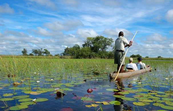 Okavango_Delta_072