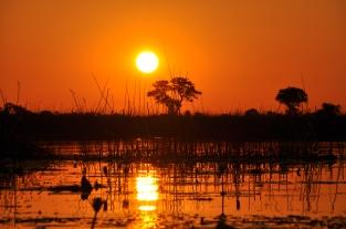 okavango_delta_sunset_www.zuidafrikaspecialist.nl